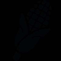 Rheintaler Mais